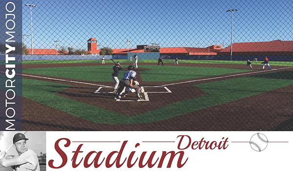 Baseball-Cards_Field-3