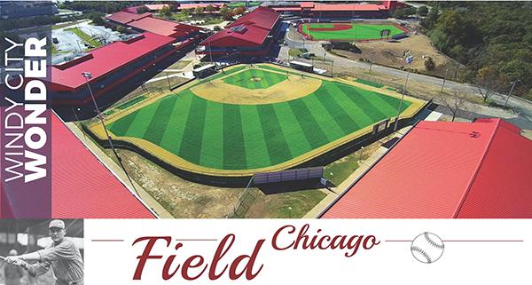 Baseball-Cards_draft-Field-1